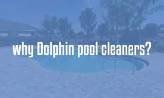 Why Dolphin pool cleaners?