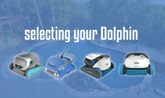 How to select your Dolphin